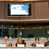 "Brussels Conference on ""Left Behind"" – 2 March 2011"